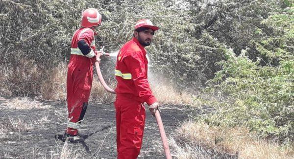 ۱۵ هکتار از اراضی سیریک در آتش سوخت